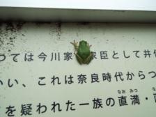 NO3665 静岡県浜松市北区細江町中川 売地